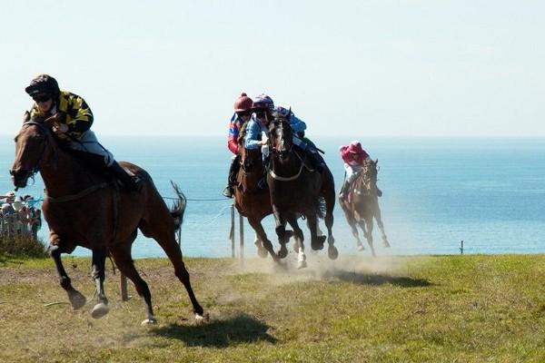 Local Horse Racing